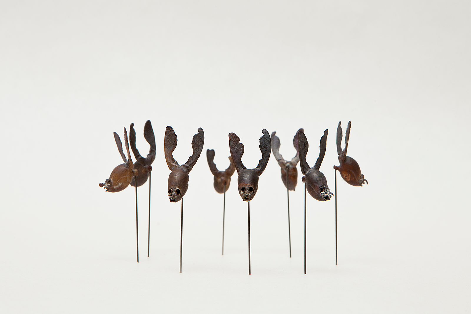 """Wolpertinger""       9 Pin brooches    
