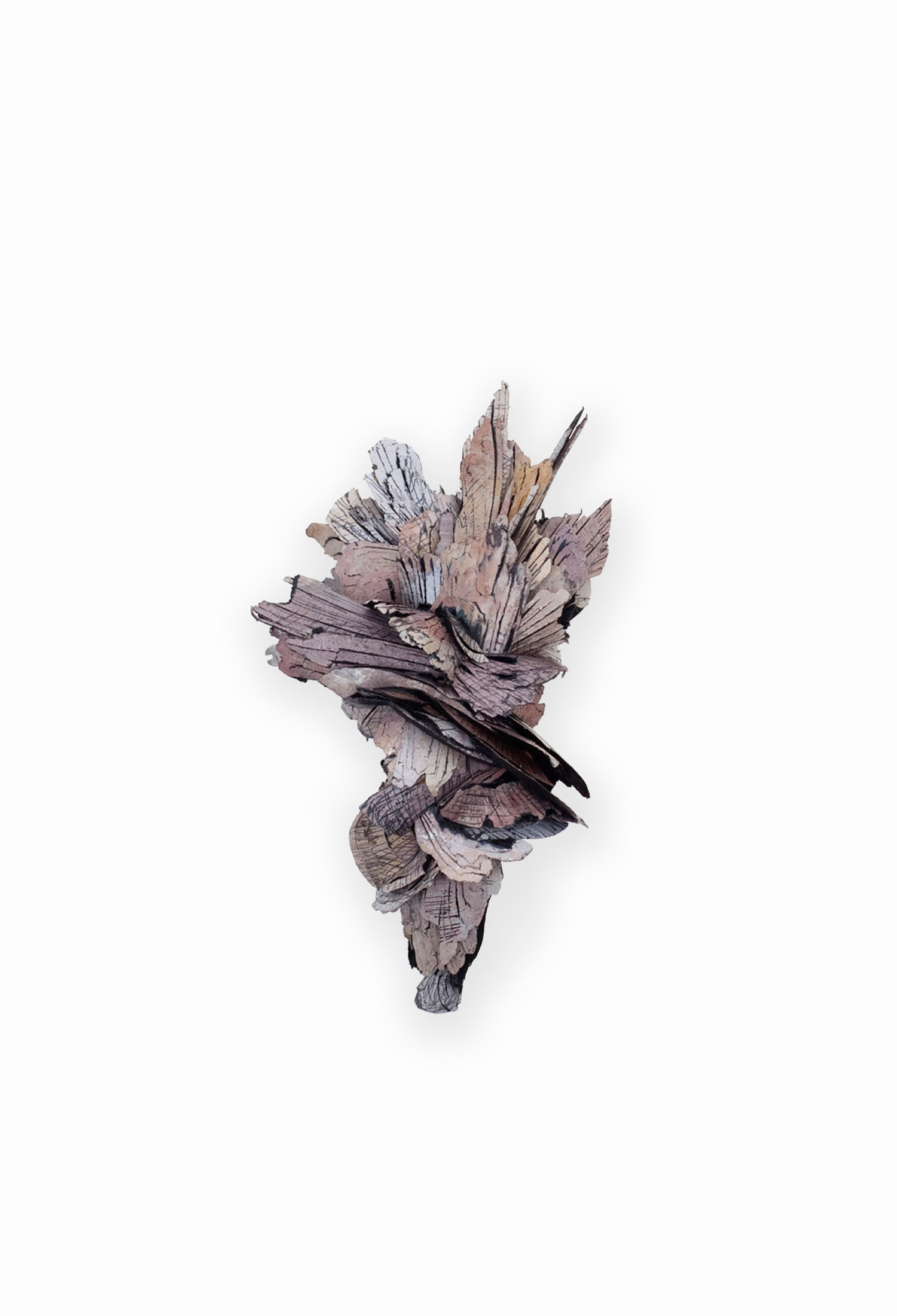 Free Radical (part 9)     Brooch     |  2012     |   Treated cellulose, paint, coal, glue, silver, brass, stainless steel     | 95X53X48 mm